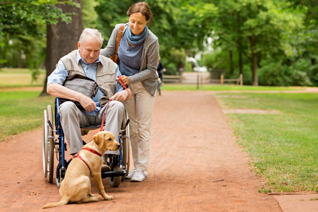 Zorgvilla bewoner in rolstoel wordt begeleid met een puppy door een park